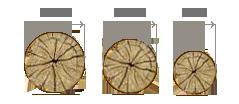 Apvali mediena